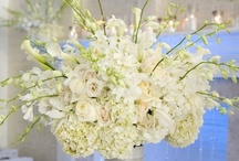White Wedding / Luxe and elegant white wedding ideas we adore! To view floral design by Signature Bloom, visit us at www.signaturebloom.com | flowers San Jose, CA | Please note that images on this board are owned by their original owners, you can view the source by clicking on the picture twice.