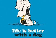 peanuts / thanks Charles Shulz