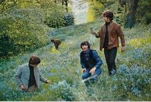 The Beatles / by Jennifer Oursler