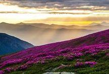Beautifull scenes