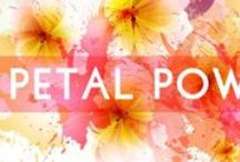 PETAL POWER / by G-Stage | www.gstagelove.com