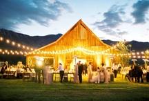 Weddings / by Kalee Cowan