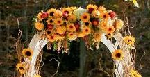 Autumn Weddings / Our favorite autumn wedding ideas, from color palettes to venues -Seattle, Bellevue, and beyond- and custom wedding rings, of course.