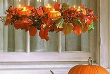My Favorite Season / by Brandy Torres