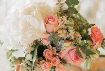for a far-off wedding / by Johanna Harmon