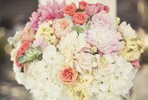 Wedding Ideas / by Jen Fitzpatrick