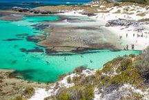 Rottnest Island / Showcasing the Best of Rottnest Island and making it easy for you to book tours and attractions in our 3 in 1 pass combos.
