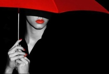 Umbrellas / by Letty Beerly