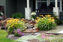 Lawn and Garden / Lawn and garden / by Pam Rinehart