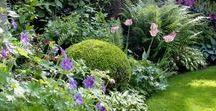 Home |Garden