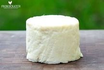 Making cheeses & fermentation