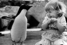 The Innocence Of A Child... / The beauty of the world, as seen from the eyes of a child.