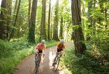 Ride'n my bike / by Toni Holder