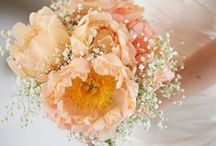 Peach Wedding / Lots of lovely pretty peach inspiration for your wedding.