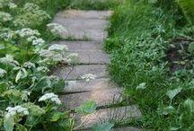 Outdoors - Garden Path