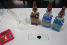 Enzymes and Energy / Resources for teaching about enzymes and energy in science class