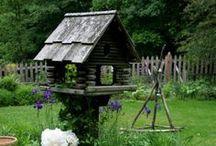 Birds & Birdhouses / by Gail Napoliton Wilson