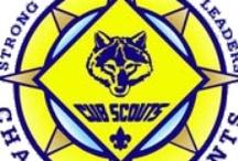Cub scout fun! / by Lucero Valdez