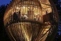 Amazingly Built! / by Nourhan Abdel-Rahman