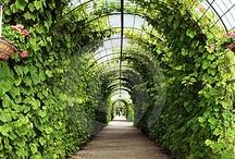 Gardens / by Sherry Hart