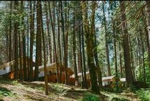 Nevada City, Grass Valley / beauty in Grass Valley and Nevada City