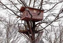 Treehouses, Tree Houses / tree houses and treehouses