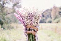 : {Beautiful Souls} : / by Kate Ladd