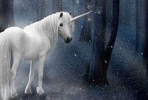 Unicorns / believe in unicorns