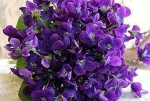 Floral & Table arrangements