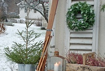 WINTERtime Highlights / What's stood out with the season... / by Pinning Towards Understanding