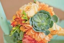 fleurs powa
