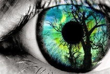 The eyes have it~ / The mirror to the soul~ / by Mindy Beer~