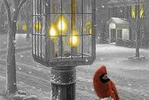 Winter Wonderland~ / Is Fabulous.. / by Karen Liana Carney