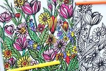 Colouring Pages / Colouring pages, colouring sheets and colouring books for kids and grown ups - some free colouring pages too!