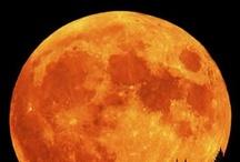 "♥ Orange! / This is definitely an ""orange"" crush! / by Shari ♥"