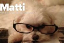 For My Four Legged Child / My little Matti is a heartbeat at my feet. / by Shari ♥