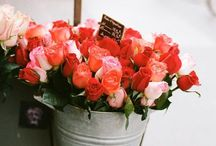 {floral passion}