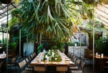 Conservatory/Garden Spaces / by Andrea McKenzie Hancock