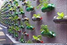 Gardening / by May May