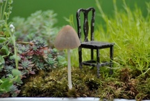Fairy, Miniature,Hobbit & Gnome Gardens / everything tiny ~ We love all the magical creatures that share our gardens
