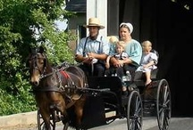 All Things Amish / by Kathy Bryan