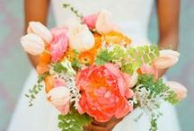 Weddings: Colors: Coral