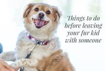Pet care while you're away / Travel is one of life's great experiences, but leaving a furry kid at home is hard for pet parents. Feeling prepared can help you feel good about leaving your pet.