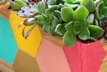 Garden Inspiration / by Ariel Backman