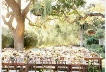 Vineyard Wedding Ideas / inspiration for a vintage inspired vineyard style wedding