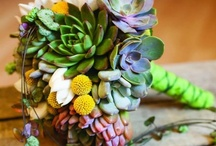 Succulents / #wedding #succulents #flowers #bouquet #rustic #garden