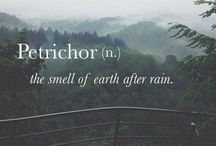Thunderstorms & Rain / I feel safe and happy when the skies are grey