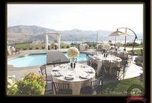 Pomanders / Lake Chelan Florist | J9Bing Floral Design