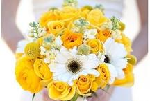 Yellow / Lake Chelan Florist | J9Bing Floral Design