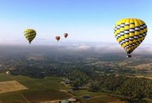 Napa and Sonoma, California / A beautiful, magical area in Northern California, home to excellent food and wine.